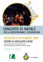 21/12/2018 Argelato - Concerto di Natale di Novensemble Orchestra