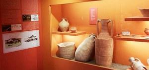 13/01/2019 San Pietro in Casale - Visite guidate al Museo di casa Frabboni con il Gruppo archeologico Il Saltopiano