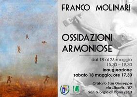 18-26/05/2019  San Giorgio di Piano - Ossidazioni armoniose. Mostra di quadri di Franco Molinari