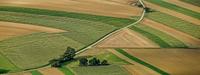 26/09/2020 Bentivoglio - Different planes: turismo responsabile nella pianura bolognese. Formazione esperienziale: seminario, pranzo, itinerario e concerto