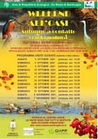 02/10-07/11/2021 Bentivoglio - Weekend all'Oasi