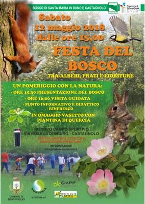 fasciaboscata2.jpg