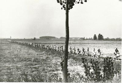 Foto storica - Mondine in bicicletta
